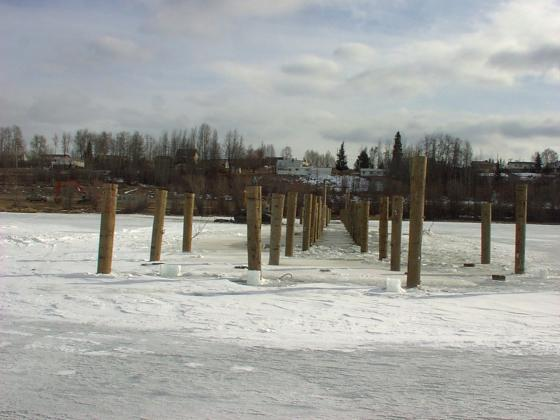Wharf Pilings In