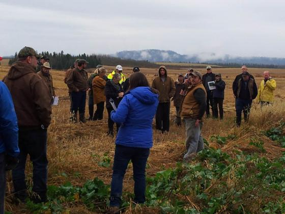 BC Forage Council Innovative Forage Production Field Tour